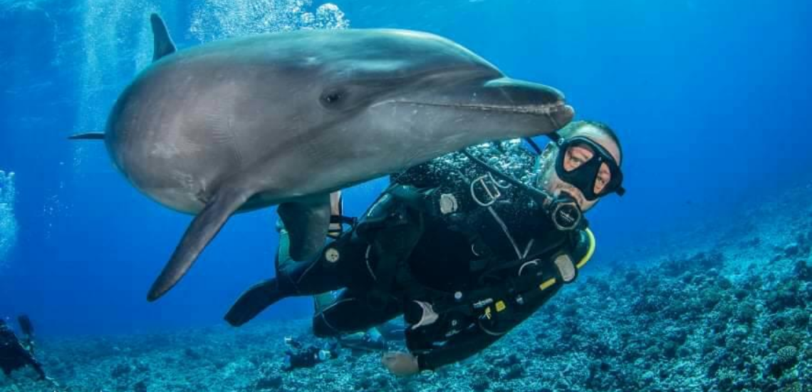https://tahititourisme.mx/wp-content/uploads/2017/08/Archimedeexpeditionsphotocouverturure_1140x550px.png