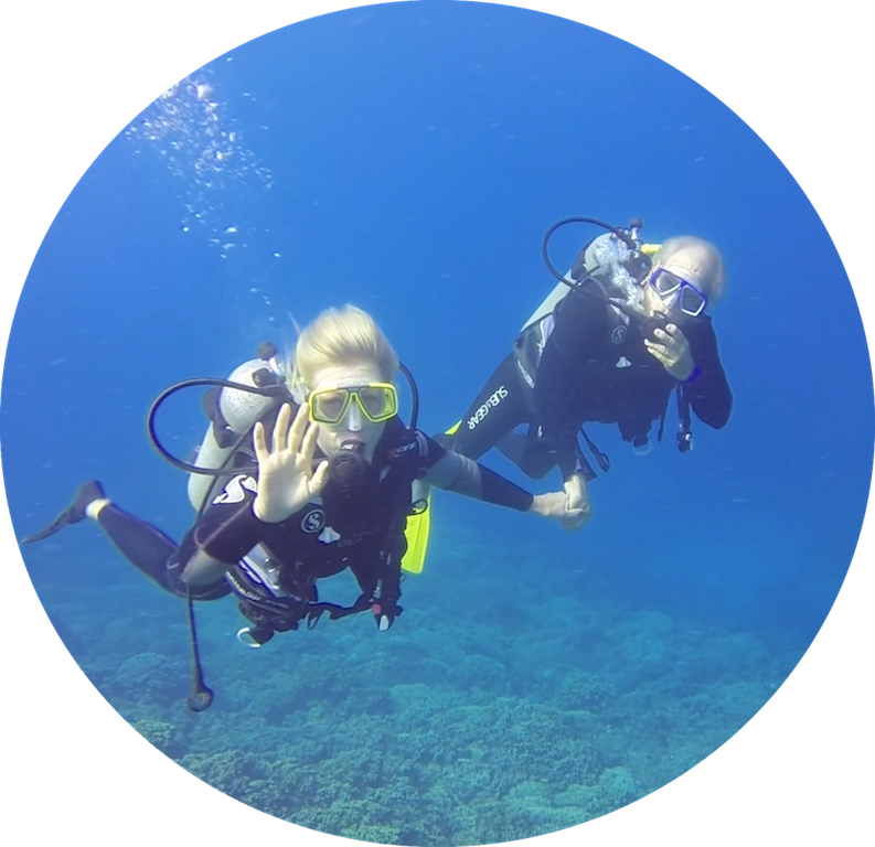 https://tahititourisme.mx/wp-content/uploads/2017/08/Divers-in-the-first-try.png