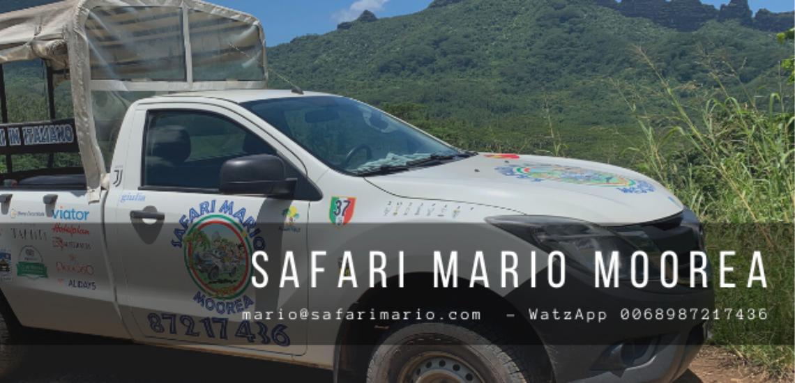 https://tahititourisme.mx/wp-content/uploads/2017/08/Safari-Mario-Moorea.png