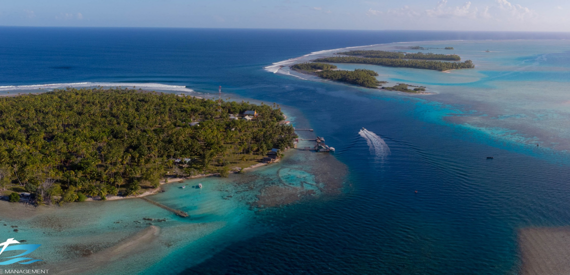 https://tahititourisme.mx/wp-content/uploads/2017/08/Tahiti-Dive-Management.png