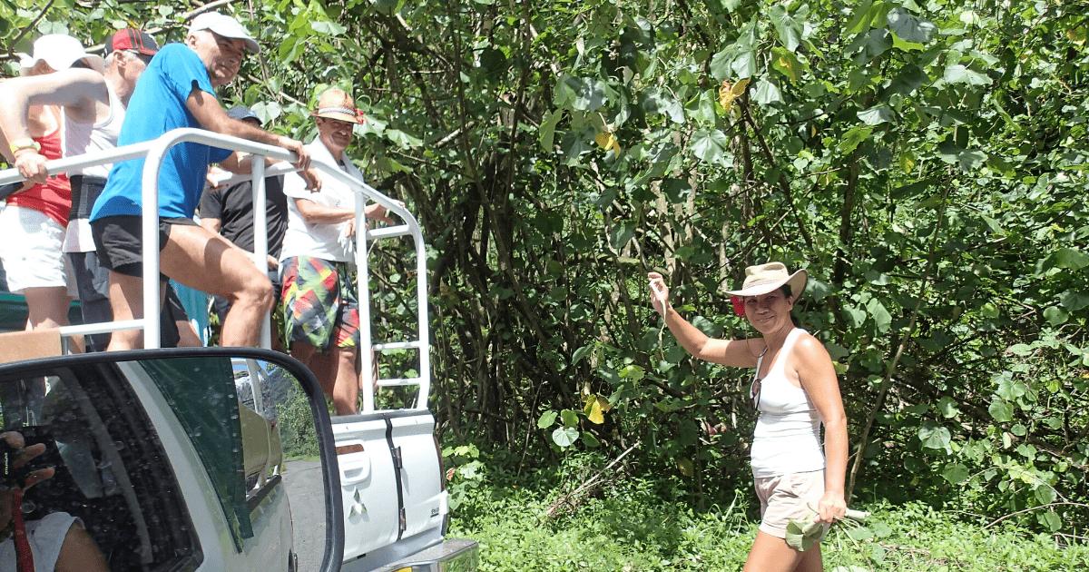 https://tahititourisme.mx/wp-content/uploads/2017/08/Tahiti-Safari-Expeditions_1140x500-min.png
