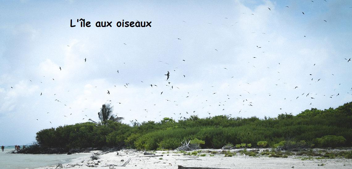 https://tahititourisme.mx/wp-content/uploads/2017/08/Tahiti-Voile-et-Lagon-photo-de-couv-2.jpg