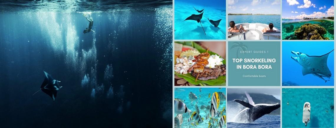 https://tahititourisme.mx/wp-content/uploads/2017/08/reef-discovery-bora-bora.jpg