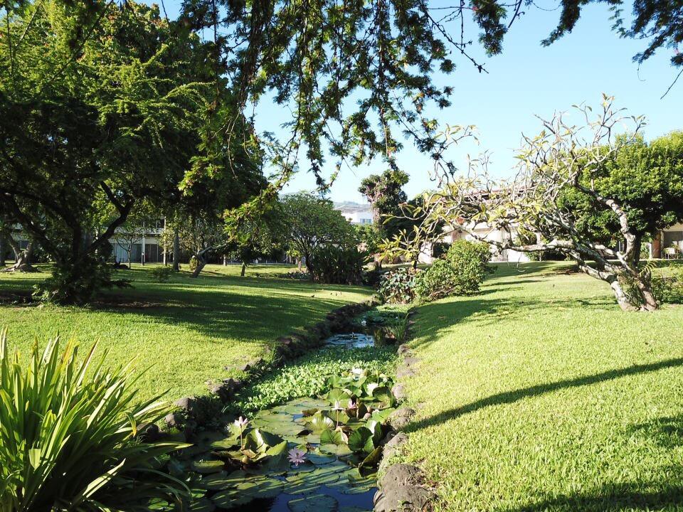 https://tahititourisme.mx/wp-content/uploads/2017/09/jardin-vue-1.jpg