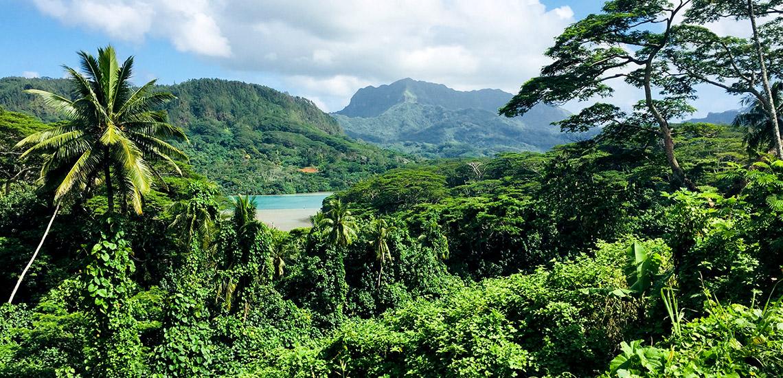 https://tahititourisme.mx/wp-content/uploads/2018/05/ACTIVITES-TERRESTRES-Green-Tours-Huahine-2.jpg