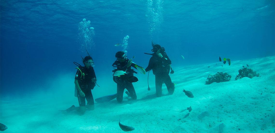 https://tahititourisme.mx/wp-content/uploads/2019/04/Tahiti-Nui-Diving-1140x550.jpg