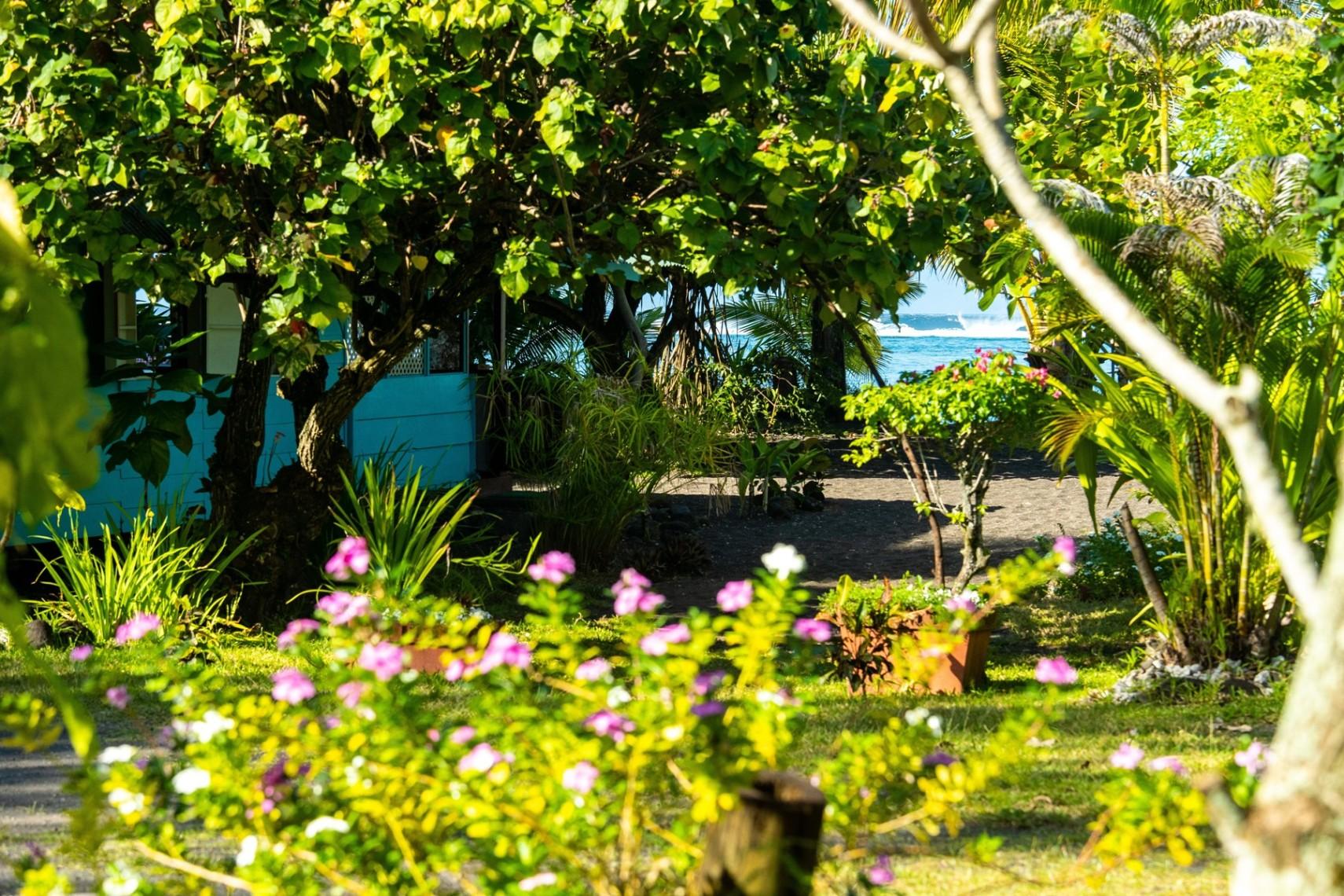 https://tahititourisme.mx/wp-content/uploads/2019/08/copie-tahiti-tourisme-800ko-1.jpg