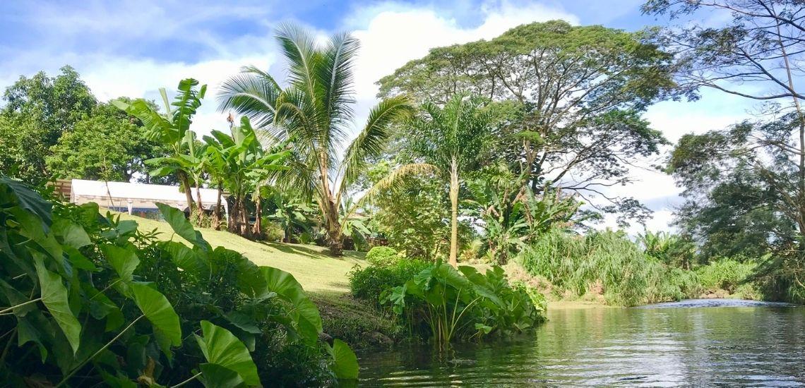 https://tahititourisme.mx/wp-content/uploads/2020/03/Teanavai_Camping_1140x5550px.jpg