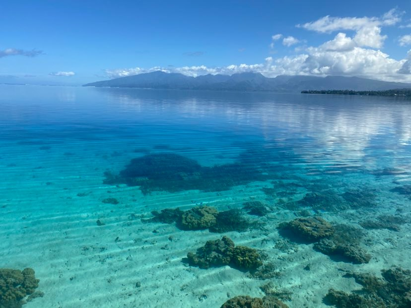 https://tahititourisme.mx/wp-content/uploads/2020/09/118979505_675979593016638_5256249963124799046_n.jpg